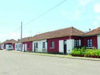 20 casas recuperadas no Bairro Vicentino em Cantanhede