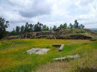"""Alegados """"caçadores de tesouros"""" vandalizaram estação arqueológica em Águeda"""