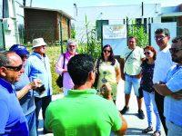 PCP denuncia problema ambiental  e de saúde pública na Vala Real em Mira