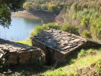 Residentes de aldeia da Pampilhosa da Serra fizeram levantamento conjunto dos seus terrenos