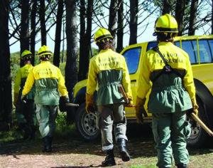 CIM Região de Coimbra vai ter sapadores florestais próprios