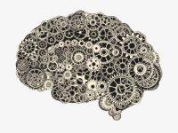 Internamentos por doença mental aumentam com temperaturas altas