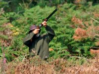 Abriu época da caça, mas está condicionada em distritos de Alerta Vermelho
