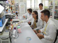 """Futuros cientistas """"convocados"""" a descobrir segredos dos laboratórios da UC"""