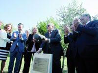 Rega  da oliveira celebra  o SNS e reconhece profissionais de saúde