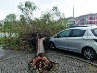 Mau tempo: Aveiro, Coimbra, Leiria e Viseu podem recorrer a Fundo Emergência Municipal