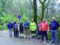 Após abate de 768 árvores Mata do Bussaco reabriu ao público