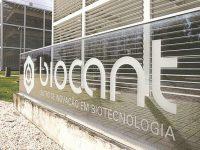 Investimento estrangeiro dispara  índices  de atratividade  do Biocant
