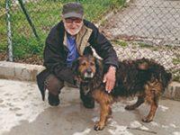 Peregrino francês em risco de perder o cão gera onda de solidariedade em Condeixa