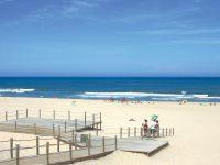 Cantanhede requalifica o sistema dunar da Praia da Tocha