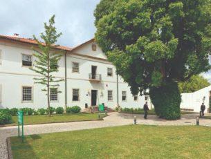 Alunos do ensino obrigatório das Escolas do Turismo de Portugal isentos de propinas