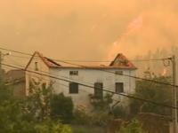 Autarcas de concelhos afetados por fogos de 2017 reconhecem bom trabalho de recuperação