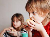 Ingestão de alimentos mais energéticos na infância causa alterações cardiometabólicas