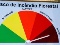 Mais de 60 concelhos de nove distritos em risco máximo de incêndio