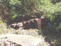 Camião cai em ravina e deixa motorista em estado grave