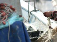 Mestre de embarcação portuguesa presente a tribunal na Irlanda sem advogado