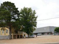 Miranda do Corvo adjudica construção de escola de Talentos por 1,5 ME