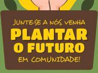 Vila Nova de Poiares vai plantar cerca de sete mil árvores