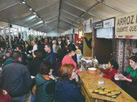 Montemor-o-Velho: Inovação e tradição ditam sucesso do Festival do Arroz e da Lampreia