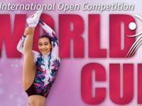 Covid-19: Federação adia eventos de ginástica marcados até 22 de março