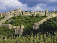Castelo de Montemor-o-Velho reabre ao público com limitações