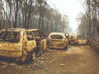 Onze indivíduos acusados dos fogos de Pedrógão em tribunal