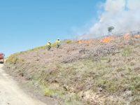 Exercício de fogo controlado limpou mato e foi aula prática para profissionais