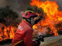Pena suspensa para homem que ateou incêndio florestal no concelho de Pombal