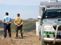 Linha SOS Ambiente da GNR ultrapassou 12.000 denúncias pela primeira vez em 2020