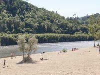 Câmara de Coimbra celebra Dia do Ambiente no Rebolim