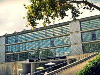 Coimbra Business School segue metodologia do MIT para formação a líderes