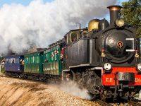 FOTO Comboios de Portugal