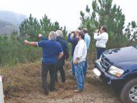 DR-São vários os grupos de visitantes que percorrem a serra em observação dos cervídeos